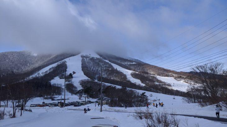 パパスキーヤーのスキーログ「20/1/19 雪不足でもなんとかツリーランができた斑尾に感謝」