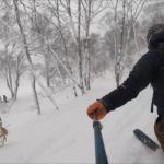 パパスキーヤーのスキーログ「20/1/25 ニセコひらふの極楽リフトで林間コースを回す」